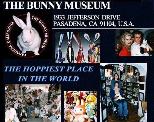bunny museum